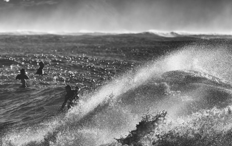 swell surf